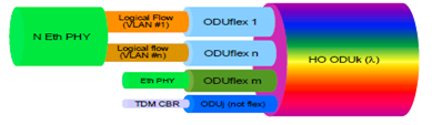 circuit ODUflex